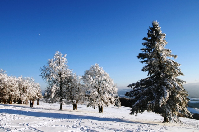 Winter Bad Bellingen